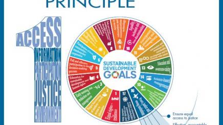 Principle 10 and the SDGs
